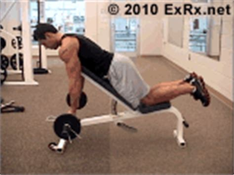 exrx grip bench barbell prone incline curl