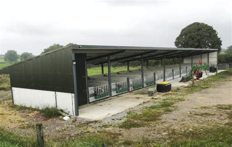 Calf Rearing Shed Design by Calf Healthy In Well Ventilated Shed 25 September 2014 Premium