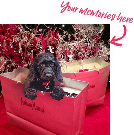 Enter Neimans 3000 Shoe Shopping Spree by Nmholiday At Neiman