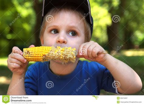 ate corn cob boy corn on the cob royalty free stock photography image 20579497