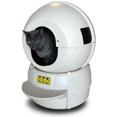 auto litter box best self cleaning litter boxes for cats popsugar pets