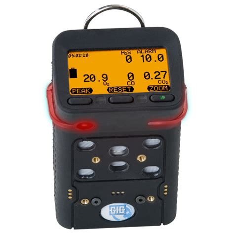 Multi Gas Detector g460 combustible gas detector the world s most advanced