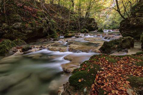 wallpaper river water rocks trees river trees leaves cascade moss rocks stones nature spain