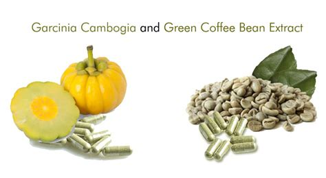 Green Coffee Diet archives dltoday