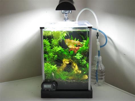 Fluval Spec Aquascape by 17 Best Images About Planted Nano Tanks On