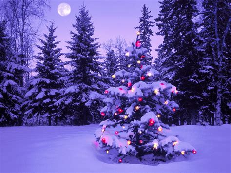 google images christmas scenes online free stuffs christmas wallpapers