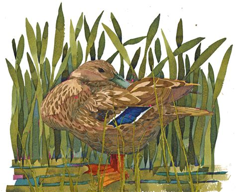 mary woodin england illustrator mallard ducks shop originals from mary ann rogers welcome to mary ann