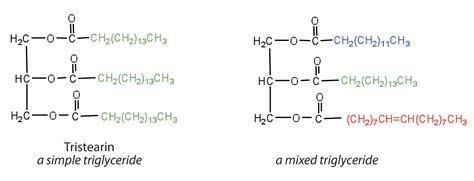 triglyceride molecule diagram fats and oils