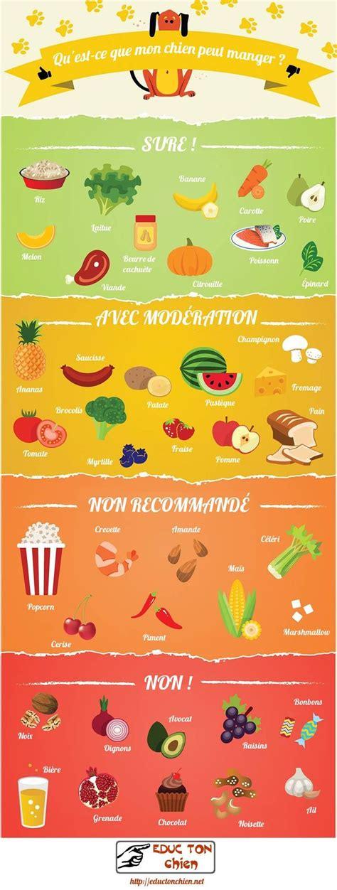 Liste Des Plantes Toxiques Pour Les Poules by Les 25 Meilleures Id 233 Es De La Cat 233 Gorie Animaux A Donner