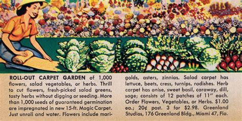 Roll Out Vegetable Garden Scanning Around With Gene The Of Inadequate Gift