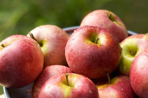 Hardgainers Detox by Lose Belly By Apples Chatelaine