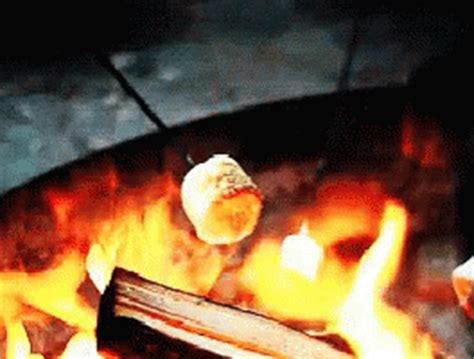marshmallows gifs tenor