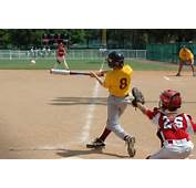 Play Baseball  Galleryhipcom The Hippest Galleries