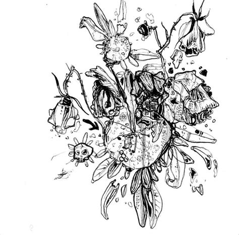design drawings 21 flower drawings ideas sketches design trends premium psd vector downloads