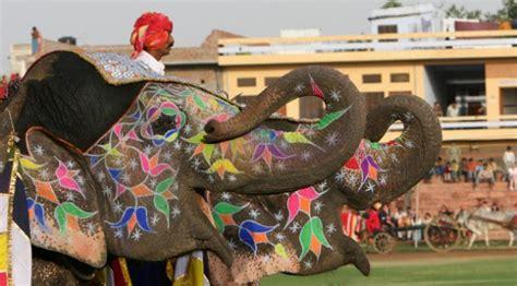 las palabras del silencio un colorido homenaje al elefante festival las palabras del silencio un colorido homenaje al