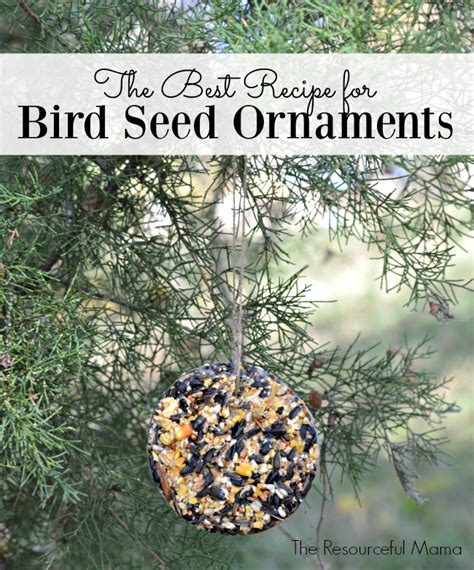 Backyard Porch Ideas Pictures The Best Recipe For Bird Seed Ornaments The Resourceful Mama