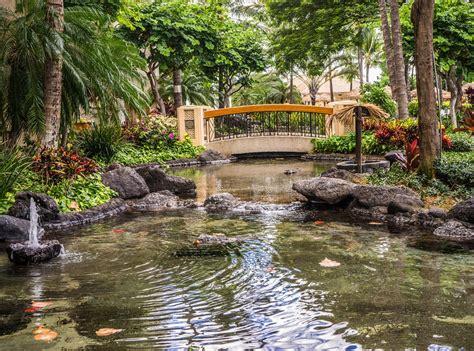 Backyard Ponds Waterfalls Pictures Belles Images De Paysages