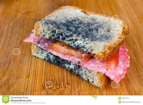 Sandwich Mold moldy sandwich with salami tomatoes on a chopping board