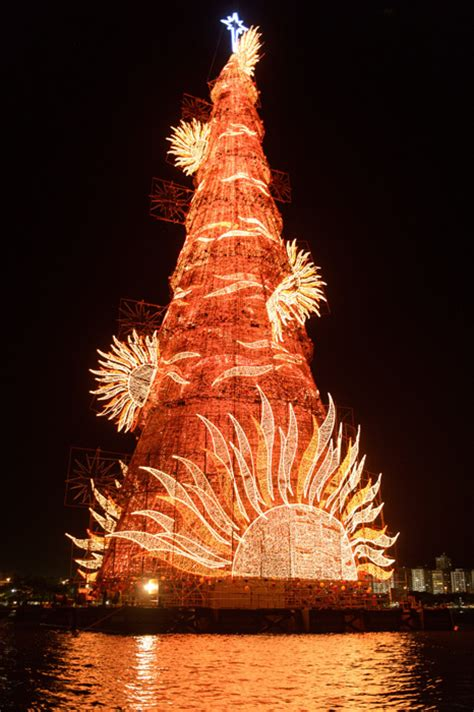 top 10 christmas trees from all over the world photo 8
