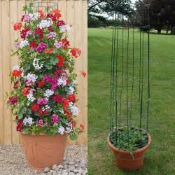 garden climbing frames for plants anyone can make these 10 beautiful and useful diy