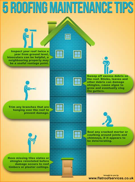 Roof Care 4 Tips To Tips On How To Maintain Your Roof Infographics Graphs Net