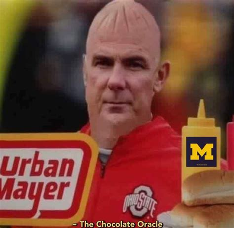 University Of Michigan Memes - 613 best images about michigan wolverine football on