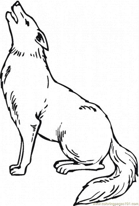 Coloring Page From Photo by Coyote Coloring Page Coloring Home