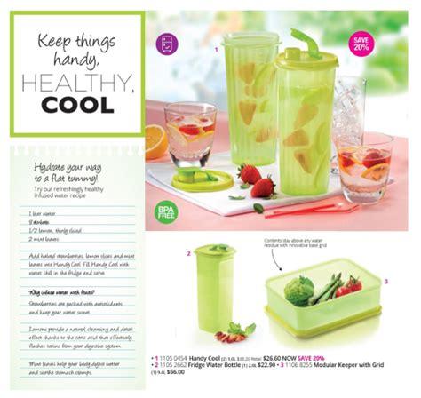 Tupperware Handy Cool freezermate on offer tupperware buy tupperware in singapore