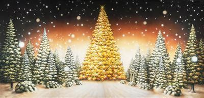 where to buy constructuve christmass wal paer scenic stage backdrop rentals theatreworld