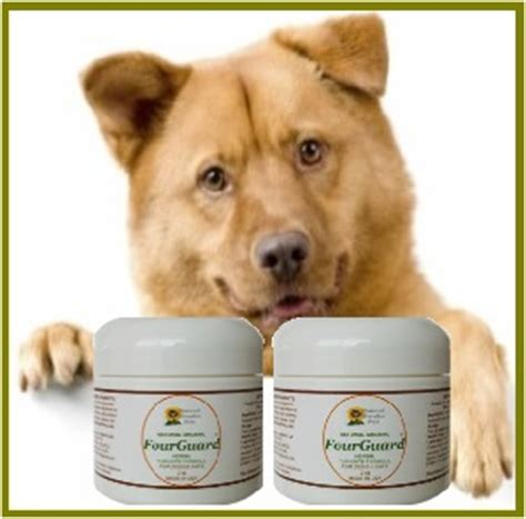 home remedies for deworming puppies fourguard herbal dewormer and parasite cleanse 40 capsules jar buy 1 get 1 free