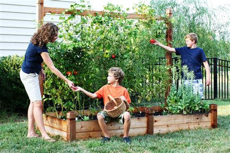 backyard agriculture how to make your home and garden more earth friendly