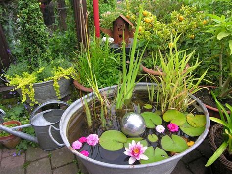 small water gardens in containers 25 best ideas about zinkwanne on terrassen