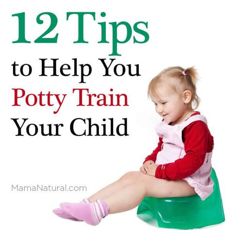 how to potty a one year potty 12 tips to teach your child