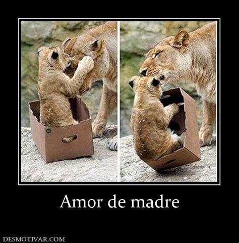 imagenes amor de madre desmotivaciones amor de madre