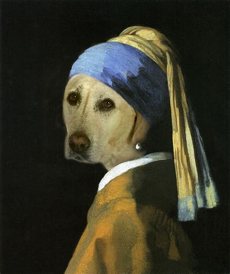 dogs with earrings 1000 images about opdracht 7 on pearl earrings johannes vermeer and