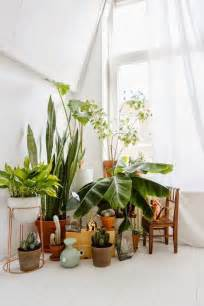 Different way to indoor plants decoration ideas in living room