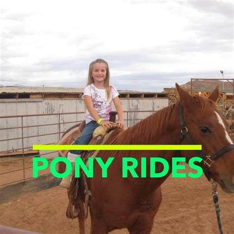 Ah Hoy Ride A Pony Theitlistscom by Attractions Staheli Family Farm Washington Utah