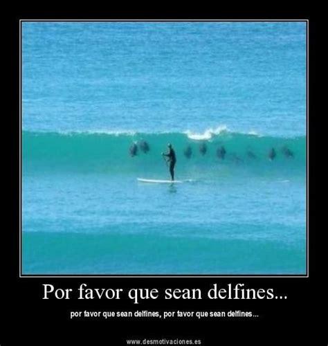 imagenes que diga x favor sarcasmos por favor que sean delfines foto