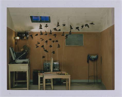 the polaroid project at the polaroid project uncovers hidden artist photographs wallpaper