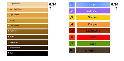 hair color meaning what does c in hair color hair color meanings best
