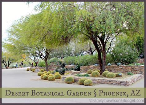 dessert botanical garden desert botanical garden family travels on a budget