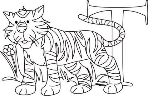 tiger t coloring page learn letter t for tiger coloring page download print