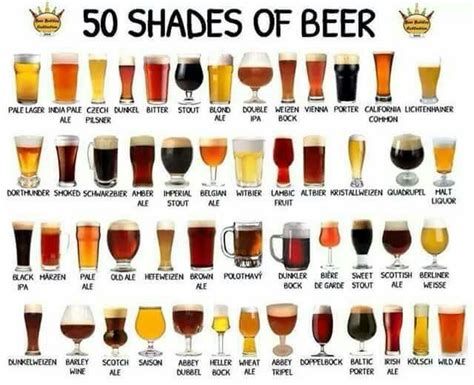tipi di bicchieri oltre 25 fantastiche idee su birra tipi su