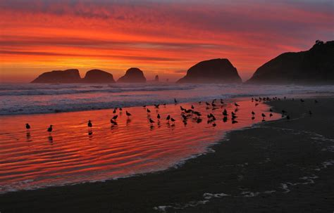 Reading Chairs by Lighthouse Inn Cannon Beach Lodging Amp Hotels On The