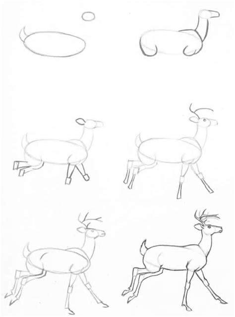 imagenes tumblr para dibujar paso a paso 25 best ideas about animales faciles de dibujar on