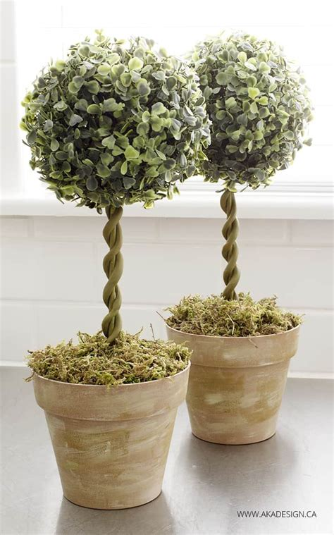 small  stunning diy topiaries youll    home