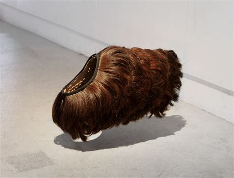 dogs with human hair aki inomata swaps human hair with to exchange fur coats