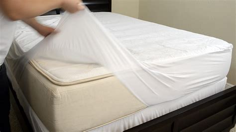bed bug cover bed bug cover the easiest way to eliminate bed bugs is to