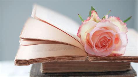 libro a z of flower portraits hd hintergrundbilder b 252 cher retro notizen rose bl 252 tenbl 228 tter desktop hintergrund