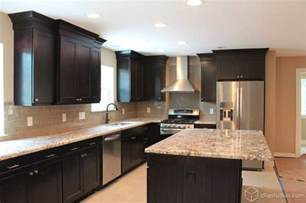 Black Kitchen Cabinets Black Kitchen Cabinets Traditional Kitchen Houston By Cliqstudios Cabinets